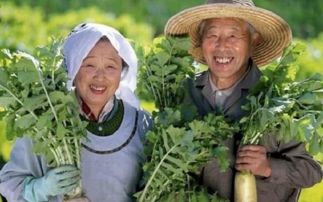 Sống lâu trăm tuổi như người Nhật… không khó